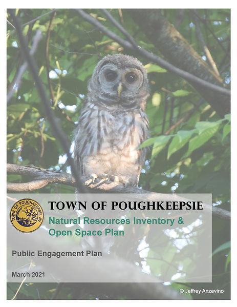 Poughkeepsie Public Engagement Plan Cove