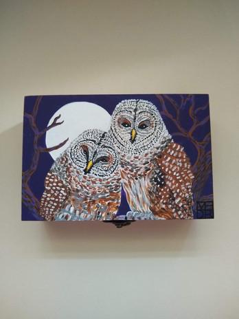 Silver moon Owls Art box