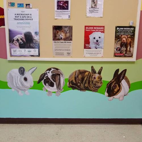 Four Bunnies + Bulletin Board