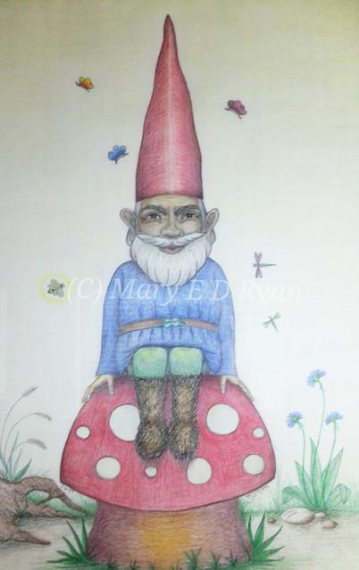 Lokki the Trickster Gnome