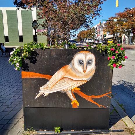 Owl Tree Planter Art