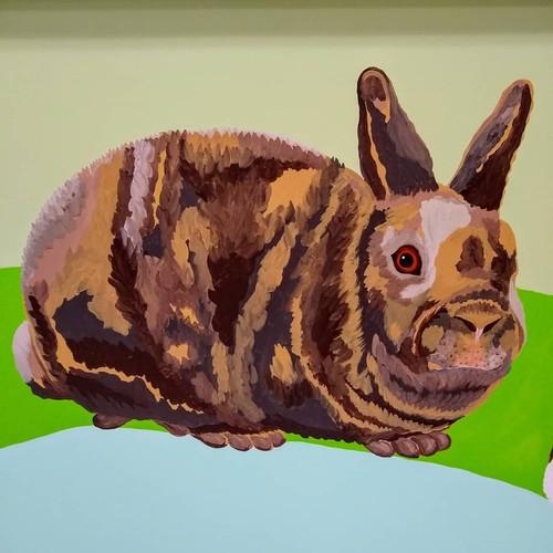 Brindle Bunny