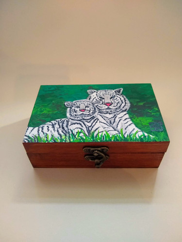 Eyes of the Tigers Art Box