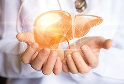 Liver Health.jpeg