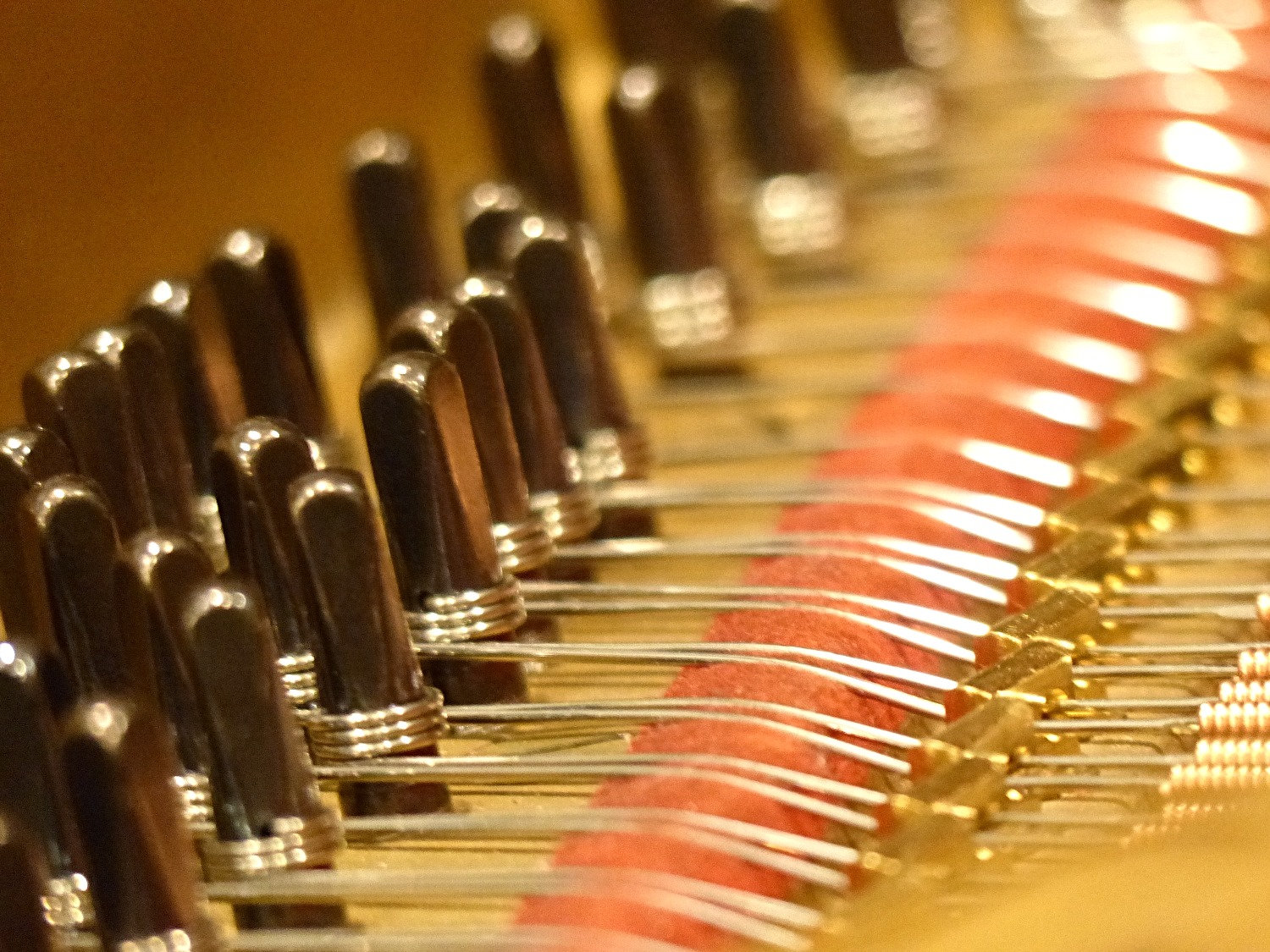 Piano Tuning Service & Pitch Correction