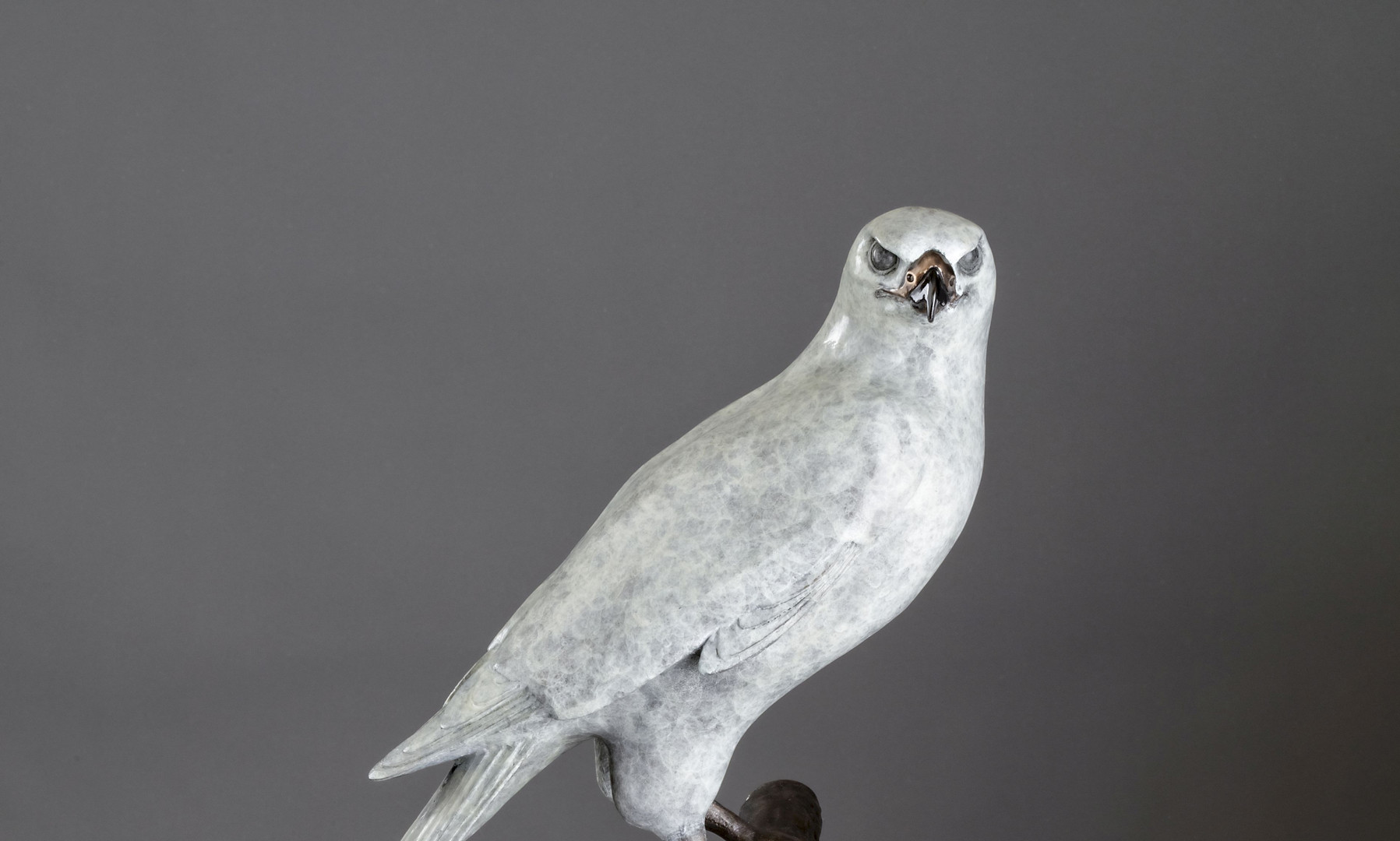 """The One and Only"" Goshawk Bronze Sculpture Life Size"