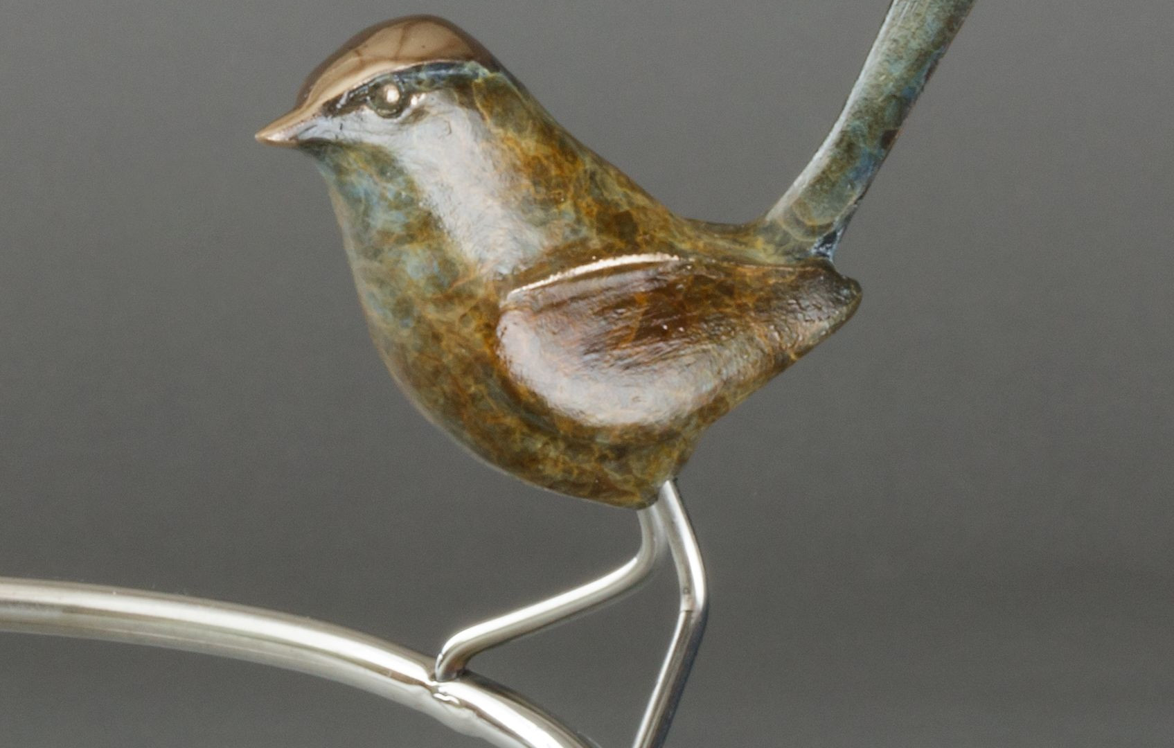 Wren on a Branch