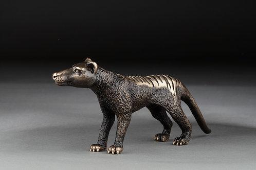 Thylacine / Tasmanian Tiger