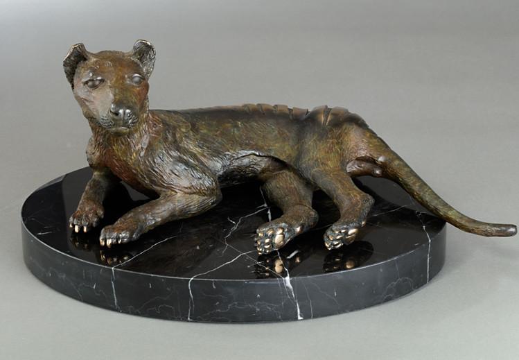 """Thylacine Resting"""
