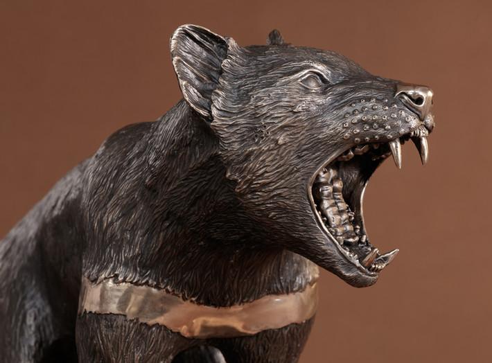 Tasmanian Devil Life Size