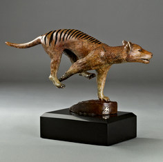 Tasmanian Tiger Bronze Sculpture by Jke Mikoda