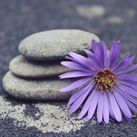 Body, Mind & Soul - über unsere Art ätherischer Öle zu nutzen