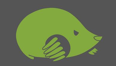 Ruitong Mole Logo V1