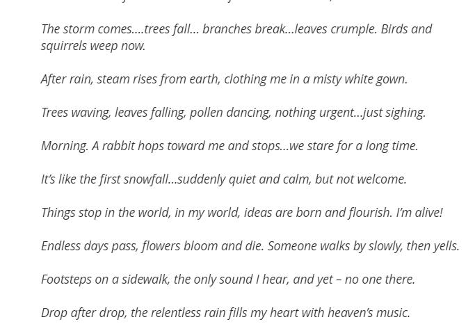 Pieces of Haiku