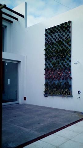 jardin vertical terminado (4).JPG
