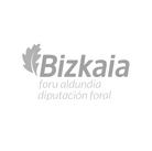 Diputación de Bizkaia.png