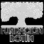 fundacion-botin-final_edited.png