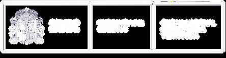 Logo limpio web.png