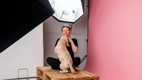 How to Photograph a Shy Dog