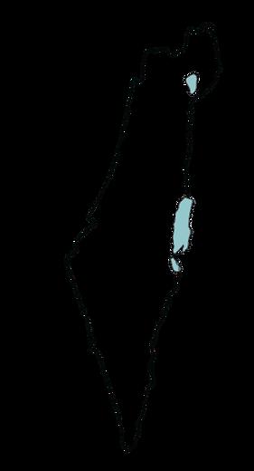 מפה - רקע שקוף.png