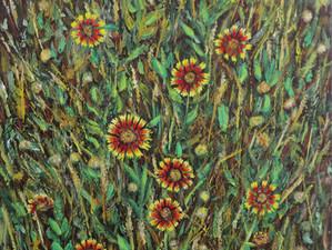 Premier Gallery, Flower Mound, TX