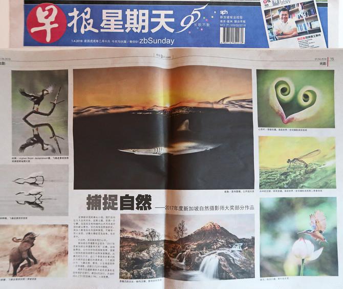 Morning Newspaper