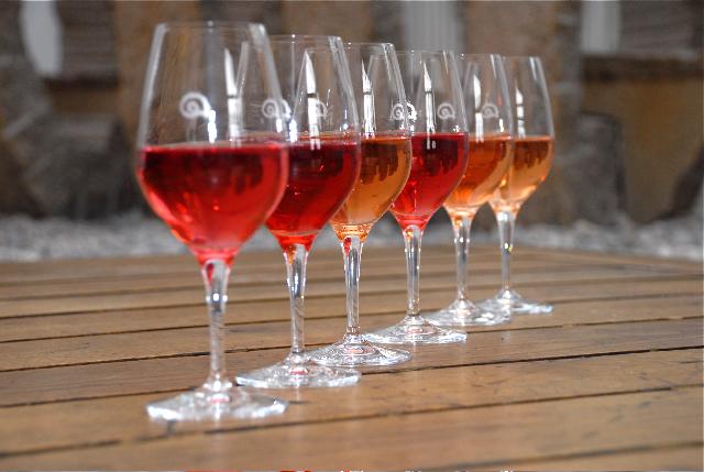 best-of-bio-wine-2008_6.jpg