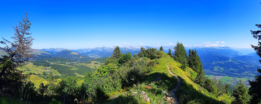 Vos vacances d'été en montagne au Praz de Lys.