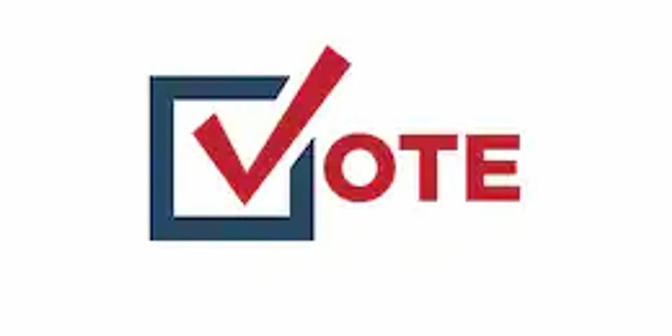 AME V-Alert - register to vote (1)