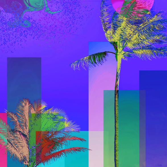 Paraíso Violeta