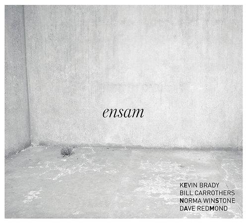 Kevin Brady - Ensam