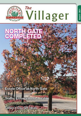Irene Farm Village Issue 6 2021