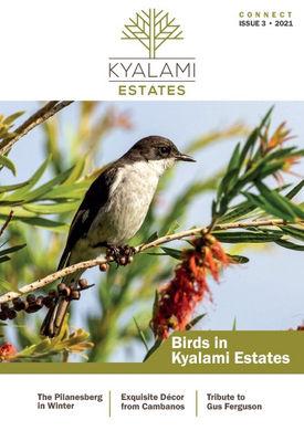 Kyalami Estate Issue 3