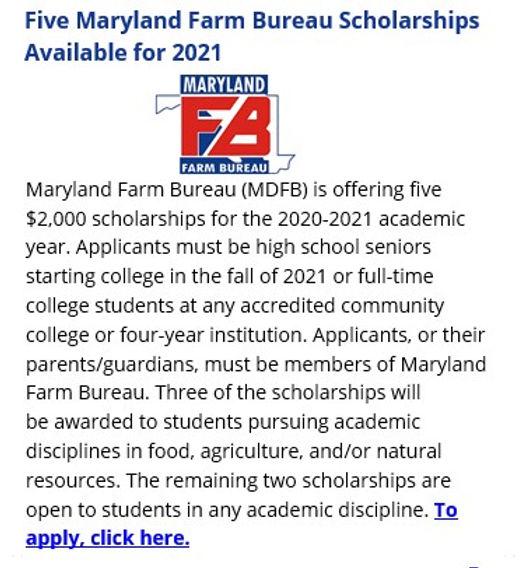 FB Scholarship.jpg