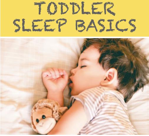 Workshop ~ Toddler Sleep Basics