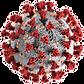 765px-SARS-CoV-2.png