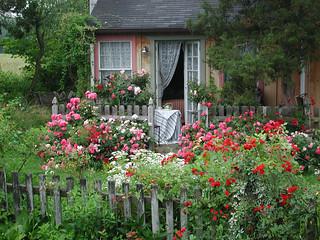 Il mese delle Rose