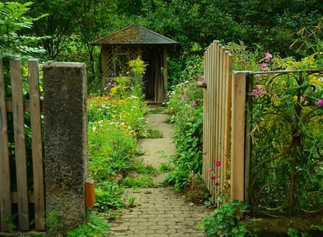 Aiutiamo la fauna dei nostri Giardini