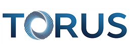 Torus Website Logo.png