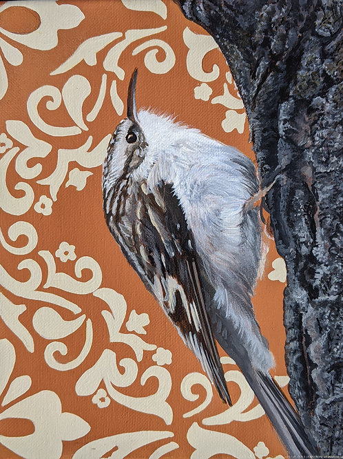 Brown Creeper  Archival Limited Edition Print
