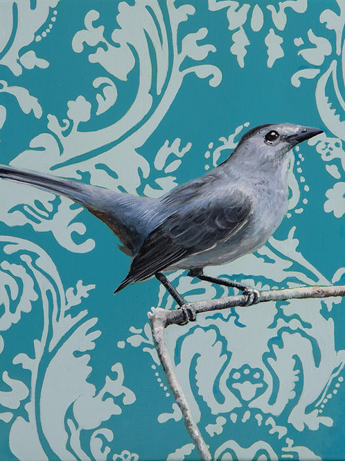 Gray Catbird Archival Limited Edition Print