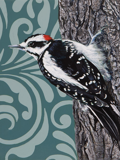 Harried Woodpecker Archival Limited Edition Print