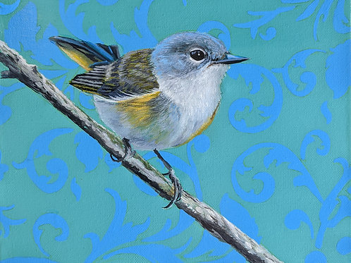 Female American Redstart  Archival Limited Edition Print
