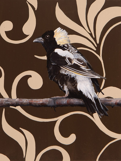 Bobolink  Archival Limited Edition Print