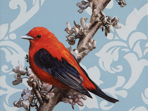 Scarlet Tanager  Archival Limited Edition Print