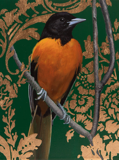 Baltimore Oriole  Archival Limited Edition Print