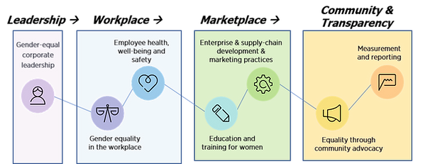 WEPs Value Chain graphic.png