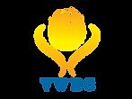 logo_VWEC_final-01.png