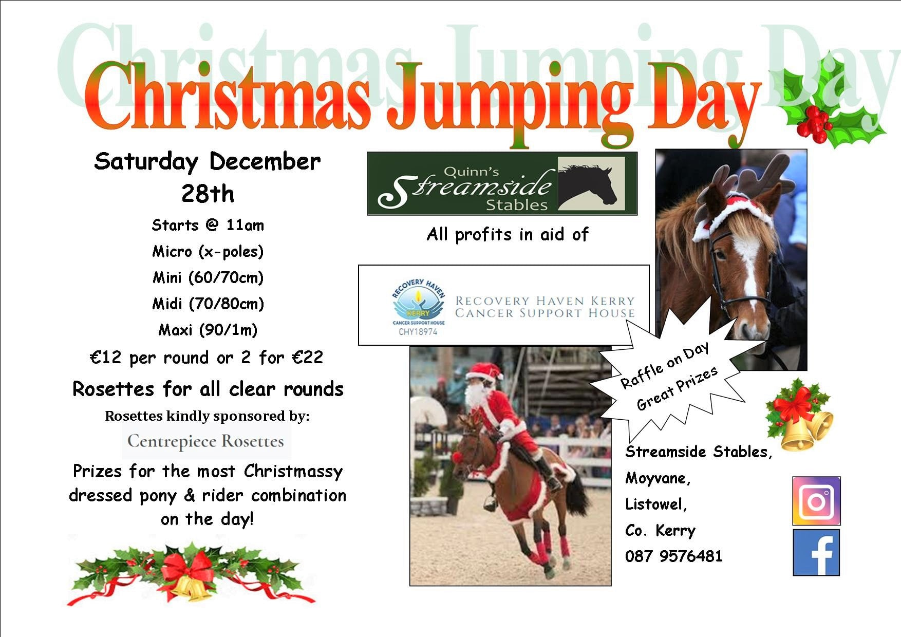 Christmas jumping day Saturday 28th Dece