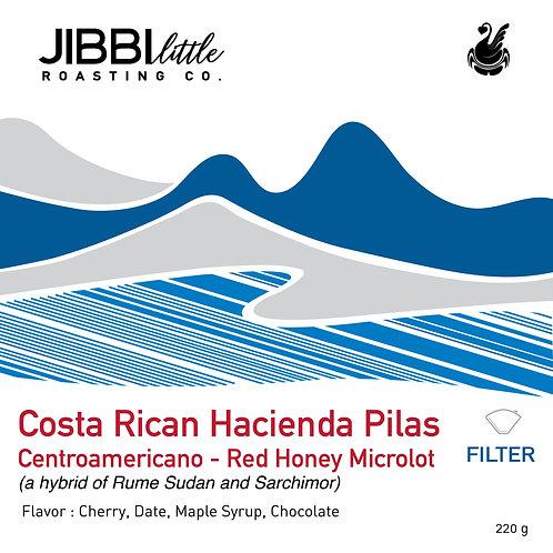 400g Costa Rican -Hacienda Pilas - Washed